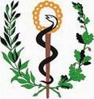 20111222182822-logo-minsap.jpg