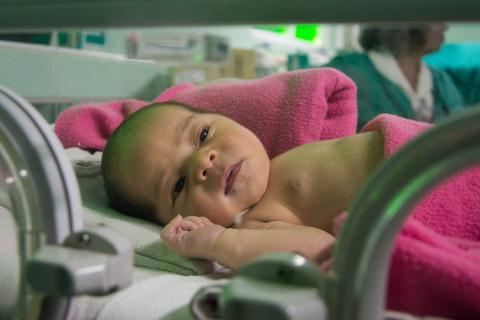 20170101212149-con-4-33-fallecidos-por-cada-mil-nacidos-vivos-de-mortalidad-infantil-cerro-camaguey-el-2016.jpg